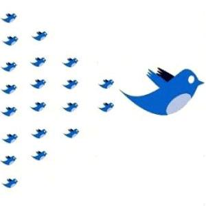 Truco para obtener toda la información de tus seguidores de Twitter.